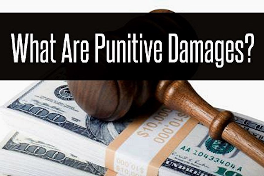 Punitive Damages Awarded For Trustee's Egregious Conduct