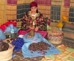 Shelling argan seeds