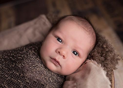 British Columbia Backs Baby's Bid for Bigbucks