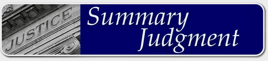 Summary Judgement Principles