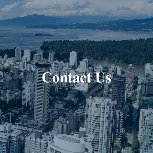 Disinherited Estate Litigation